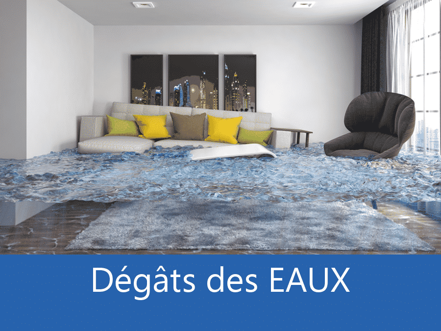 expertise humidité 73, expert humidité Savoie, cause moisissure Chambery, solutions humidité Albertville,